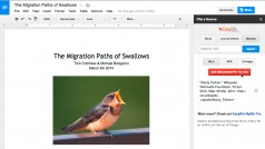 Google Drive launches add-ons for Docs and Sheets