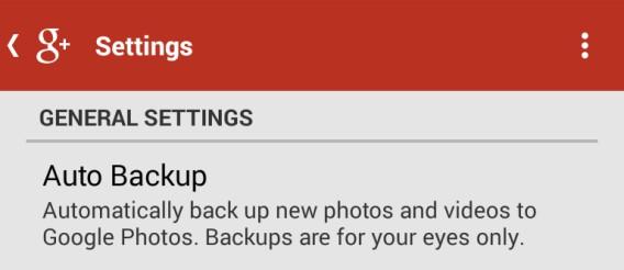 Google + Auto Backup