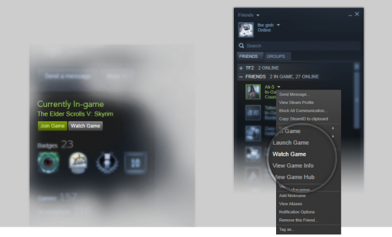 Steam Broadcasting friends list