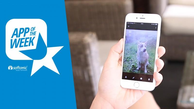 App of the Week: Google Photos