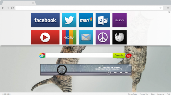 Safe browsing, now with kittens