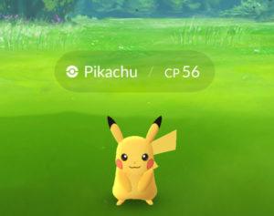 Pokémon Go - Pikachu in the Wild
