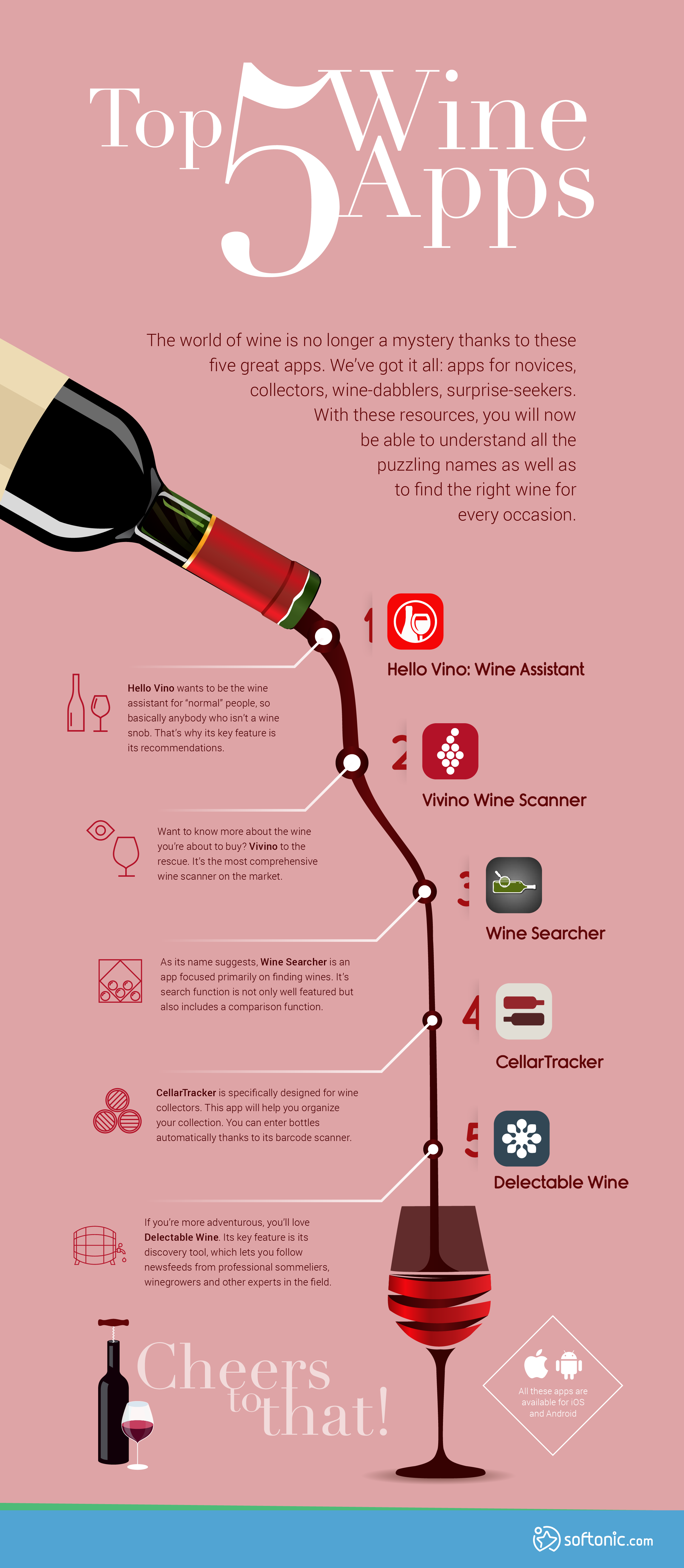 wine infographic_high