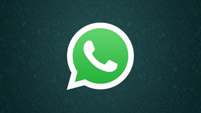 whatsapp-logo-1024×576
