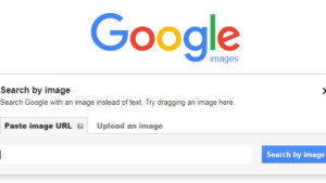 Is this what Google Images will look like in the future