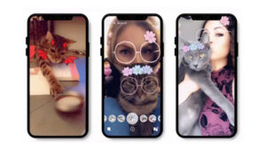 Snapchat reaches historic technological milestone by creating selfie filters for cats