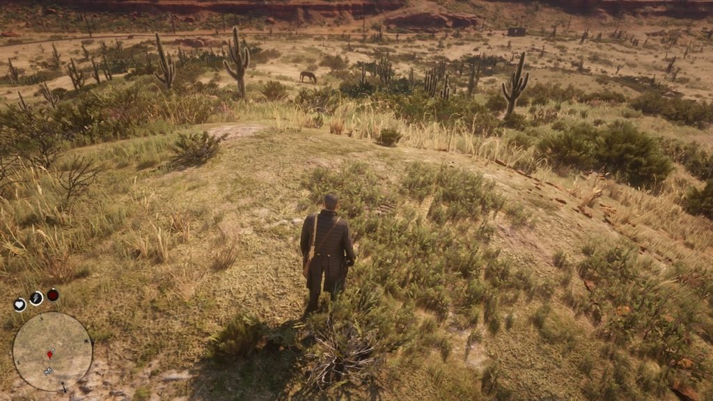 red dead 2 jorge's gap bone