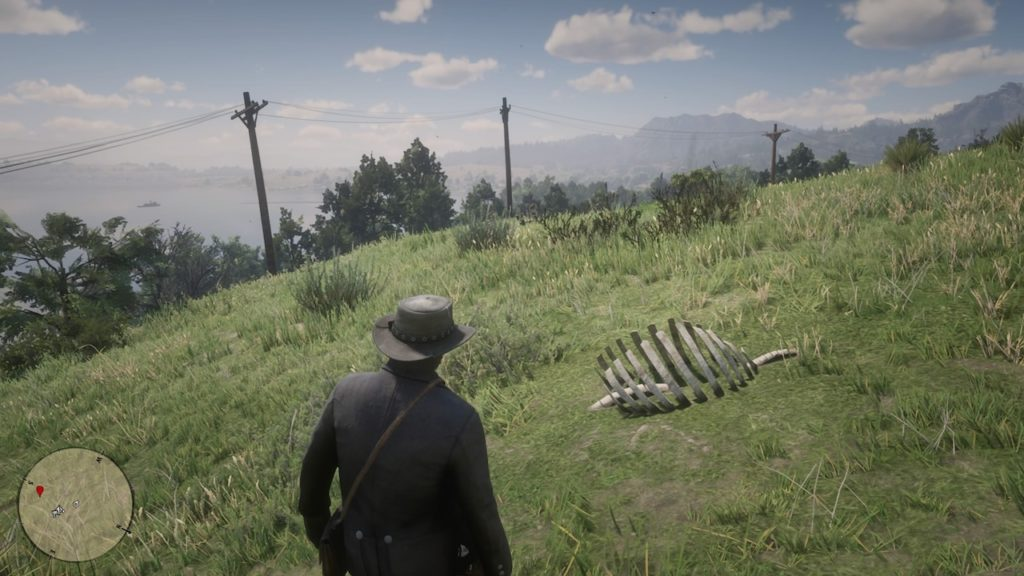 red dead 2 heartlands hill bone