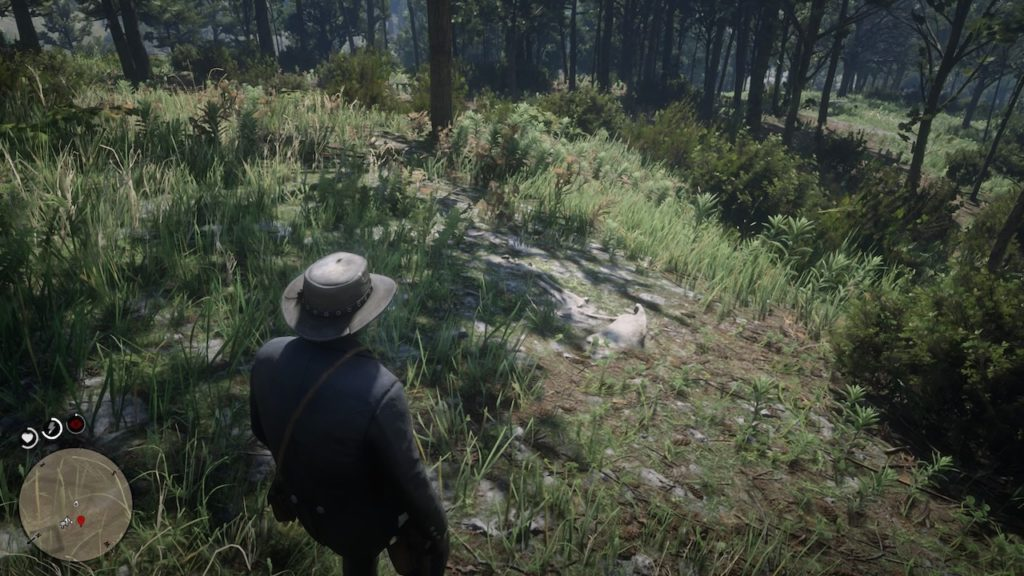 red dead 2 new hanover cabin bone