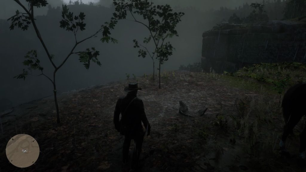 red dead 2 roanoke valley cliff bone