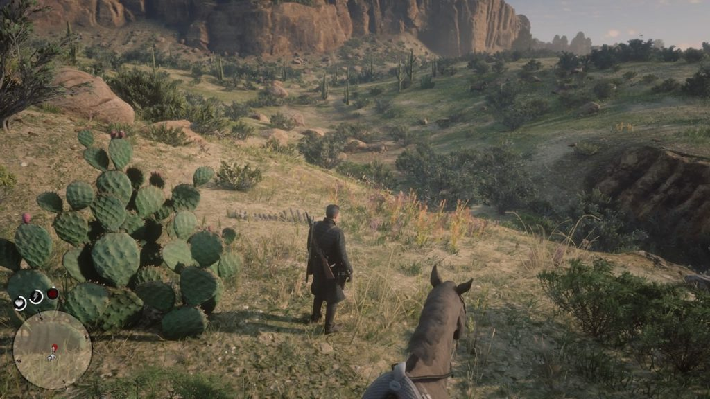 red dead 2 san luis river bone