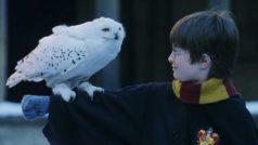Top 8 Harry Potter YouTubers