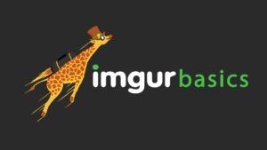Imgur: The complete guide for beginners