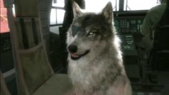 10 coolest dogs in video games