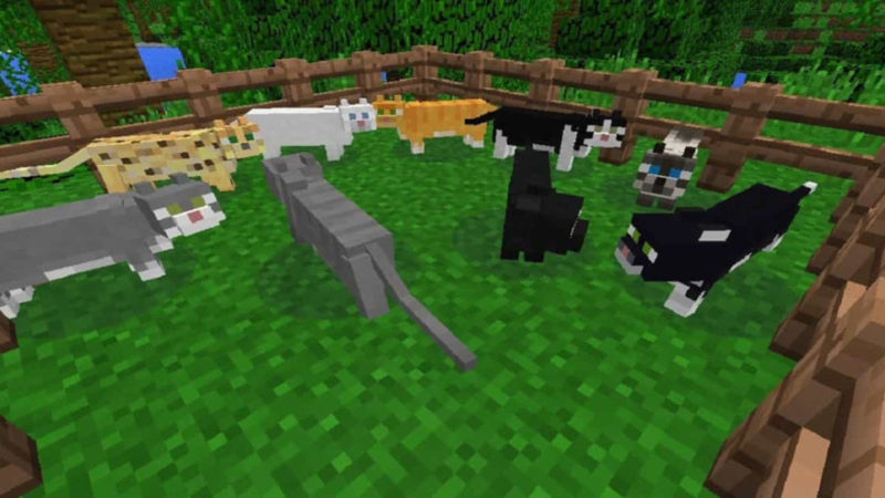How to Tame a Cat In Minecraft in 3 Easy Steps