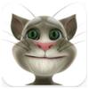 Recensione di Talking Tom Cat
