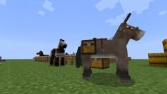 Minecraft: Hoe vang, tem, fok en berijd ik paarden?