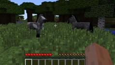Minecraft 1.7.3 komt er aan!