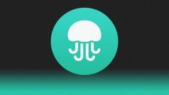 Cofundador do Twitter lança o aplicativo de busca social Jelly