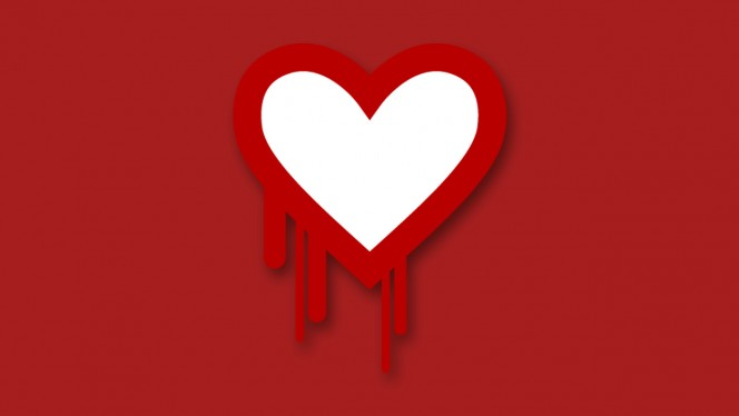heartbleed header