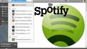 Busca avançada do Spotify: encontre mais músicas com filtros de pesquisa