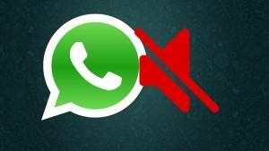 Como deixar os grupos do WhatsApp em silêncio
