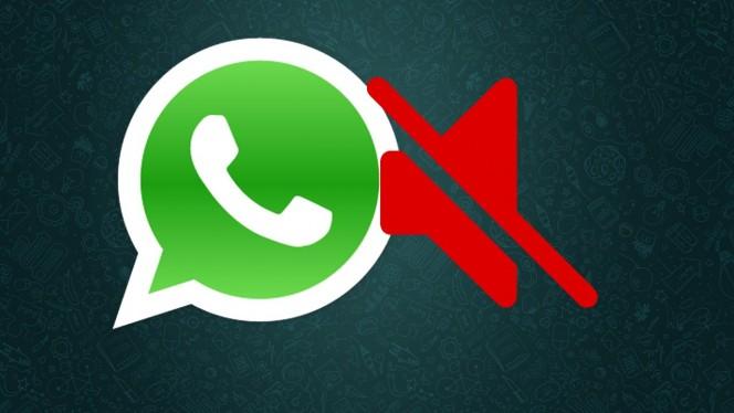 Como deixar as conversas em grupo do WhatsApp mudas