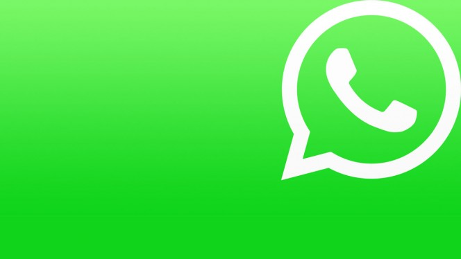 Bug WhatsApp