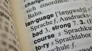 Bing Translator vs. Google Translate: Online-Übersetzer im Härtetest