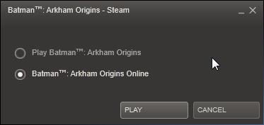 Batman Arkham Origins Multiplayer: Online? Offline?