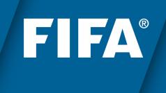 Offizielle FIFA-App: Weltmeisterschaft 2014 und 197 Ligen auf einen Blick