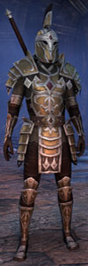 Elder Scrolls Online - Templar