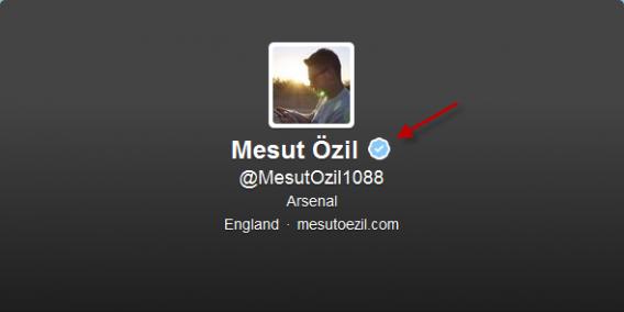 Offizieller Özil Twitter Account