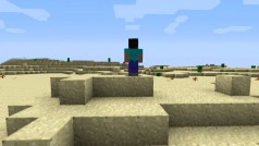 Multiplayer-Modus in Minecraft und Borderlands 2 mit Hamachi