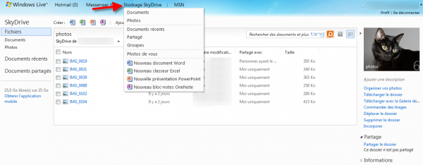 Interface de Skydrive en ligne