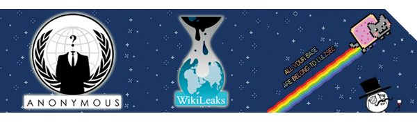 Wikileaks, Anonymous, LulzSec: piratage