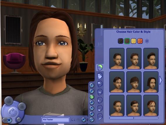Les Sims: les skins