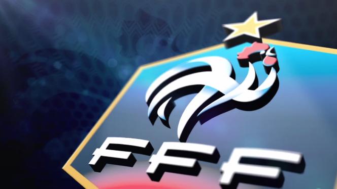 L'appli du jour: Equipe de France pour supporter les Bleus lors de la Coupe du Monde du Brésil