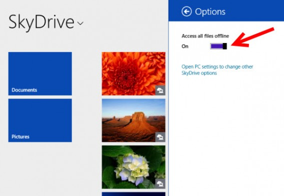 Application SkyDrive
