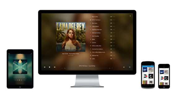 The Rdio interface