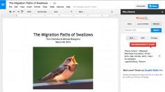 Google lance sa boutique d'extensions pour Google Docs pour rivaliser avec Office