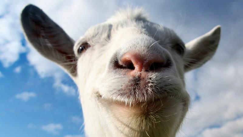 Goat Simulator: une mise à jour pour mai prochain avec une nouvelle carte