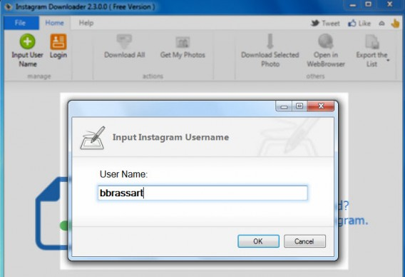 Username Free Instagram Downloader
