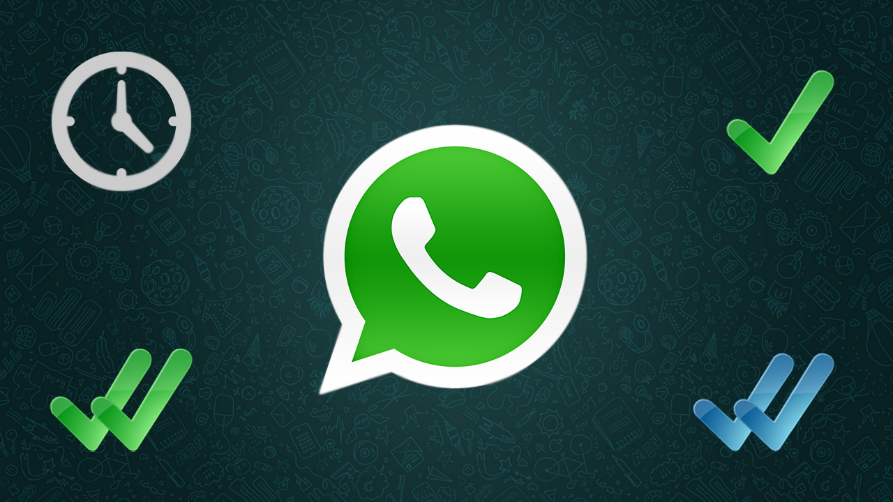 WhatsApp: que signifient le double check bleu et les statuts de lecture de nos messages