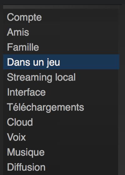 Steam menu parametres